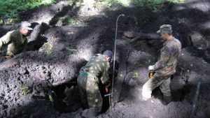 Брянцы нашли в болоте обломки самолета