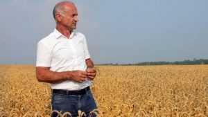 Владимир Жутенков набирает в Брянской области более 60 процентов голосов