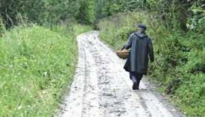 Брянские полицейские спасли заблудившихся пенсионерок