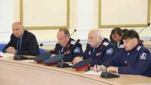 Брянские казаки зашли в правительство