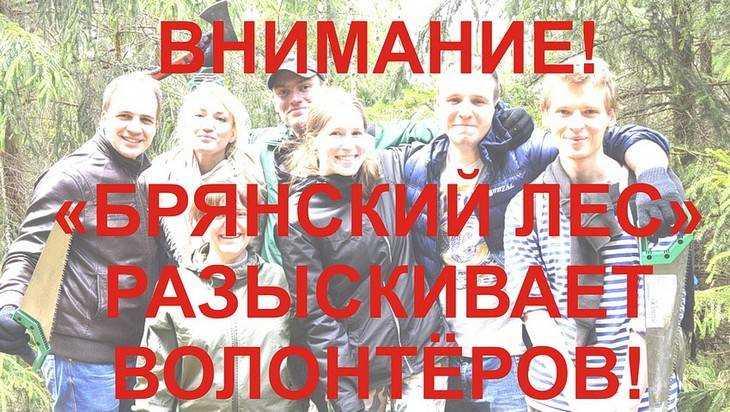 Волонтеров позвали в «Брянский лес»