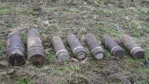 Возле брянского села обезвредили шесть мин и 15 снарядов