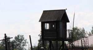 В камчатском изоляторе нашли столетний рельс брянского общества