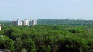 Как вырубали зелень в Брянске 40 лет назад