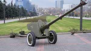 Брянская пушка напомнит о подвиге курсантов