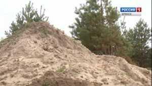 Брянская полиция начала расследование криминальной добычи песка