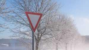 Брянщину ждёт испытание снегом, туманом и гололедицей
