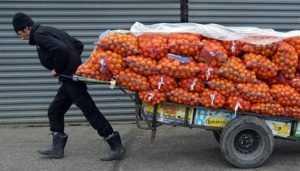 Омская фирма проиграла брянскому УМВД суд по делу о пропавших апельсинах