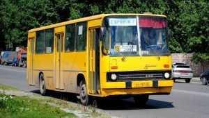 Брянская пенсионерка разбила голову в автобусе