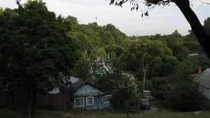 Брянским чиновникам навязали любовь к природе