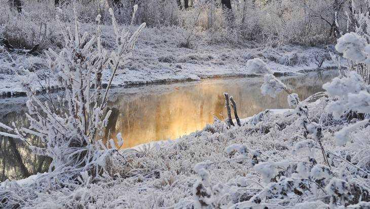 На Брянщине похолодает до десяти градусов мороза