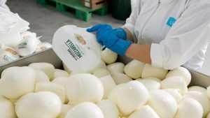 Компания «Умалат» войдет в первую тройку производителей свежих сыров в России