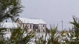 Десять причин  провести зимние выходные в «Журавке»