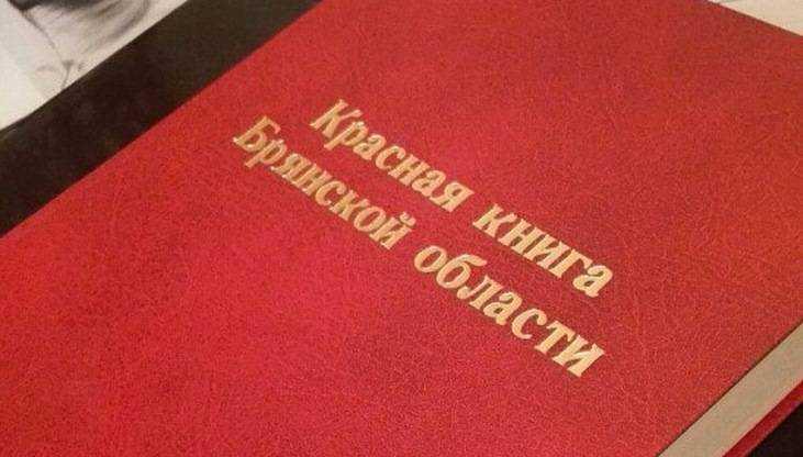 На Брянщине подготовили новое издание Красной книги области