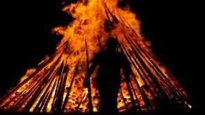 Сжегшего женщину брянского изверга посадили на девять лет