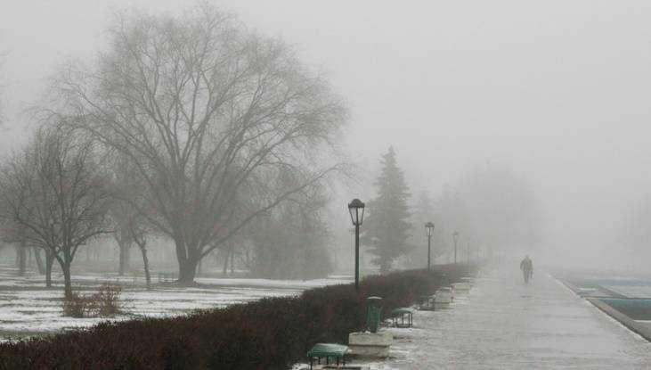 На Брянщине завтра будет скользко, туманно и снежно