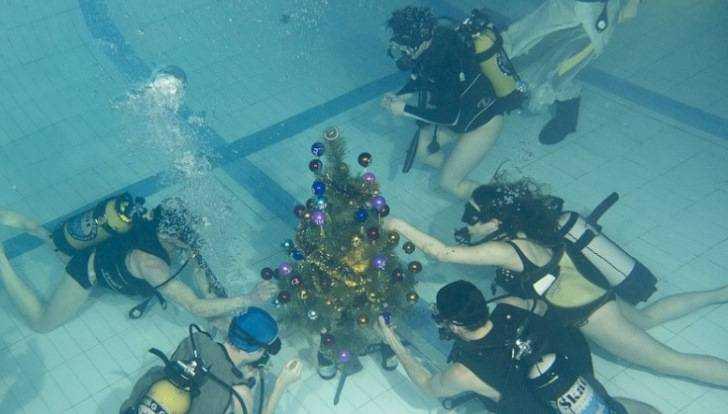 Брянских ныряльщиков пригласили на праздник подводной ёлки