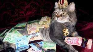 На Брянщине о доходах отчитались 3246 миллионеров