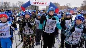 Брянщина заняла 70 место в рейтинге спортивных регионов России