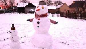 Брянские снеговики сразятся за победу в зимнем конкурсе