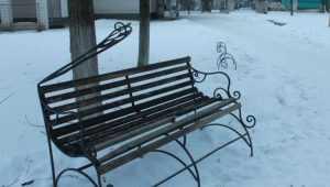 В брянском городе начали розыск вандалов, разгромивших парк