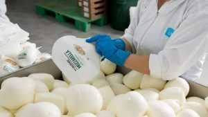 Брянскому заводу «Умалат» отказали в местном молоке