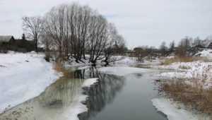 Завтра оттепель снова растопит снег на Брянщине