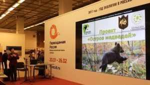 «Первозданную Россию» познакомили с брянскими медведями