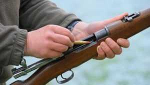 В Брянске охотничьими билетами ударят по коррупционерам