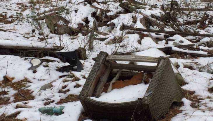 «Фронтовики» заставили брянского директора очистить лес от свалок