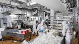 Компания «Умалат» и голландский холдинг построят очистные в Севске