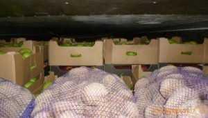 Брянские пограничники обнаружили запрещённые яблоки в белорусской картошке