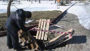 Власти Брянска назвали причину провала новой плитки на набережной