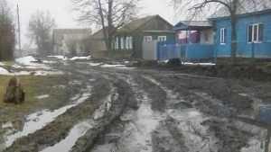 Жители брянского города Севска пожаловались на дивное бездорожье