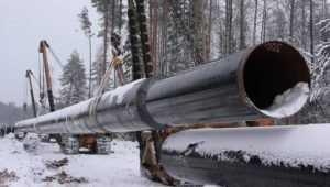 Брянский суд приговорил к году колонии похитителя трубы у «Газпрома»