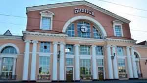 Семейная пара ответит за избиение полицейского на вокзале Брянска