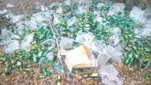 Берег живописного брянского озера превратили в пластиковую гору