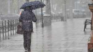 В Брянской области разгуляется штормовой ветер и похолодает
