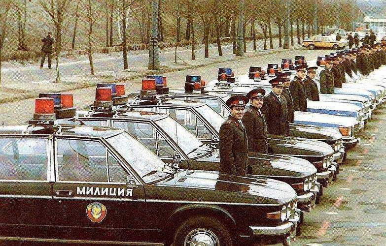 Для брянских водителей устроят засаду возле школы 59