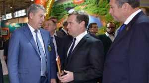 Брянские депутаты не стали нападать на главу правительства Дмитрия Медведева