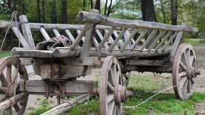 В брянской деревне грузовик покалечил упавшую с телеги женщину