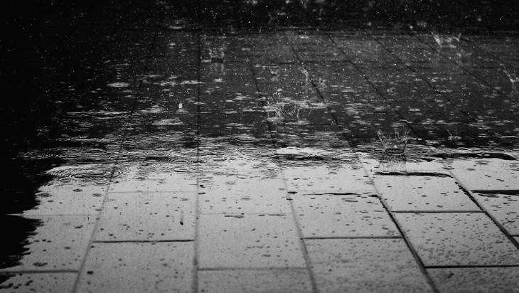 Из-за дождя в Брянске отменили субботник