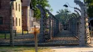 Брянские узники фашистских концлагерей поделились воспоминаниями