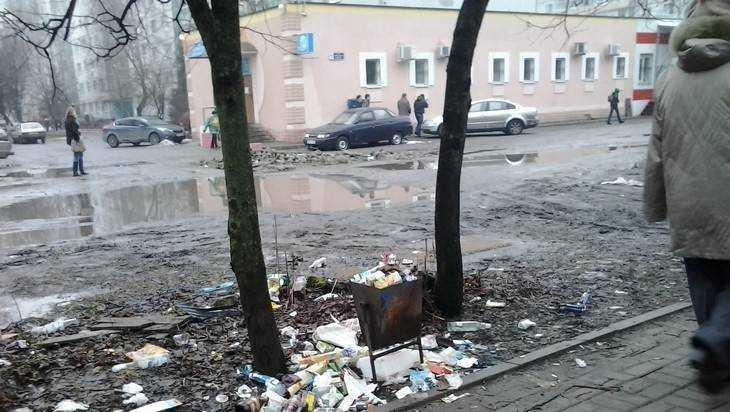 Месяц субботников в Брянске из-за ненастной погоды продлили до 1 мая