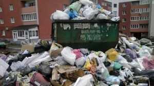 Брянский губернатор пригрозил увольнениями за горы мусора