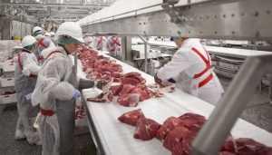 «Брянскую мясную компанию» наказали за травму работника