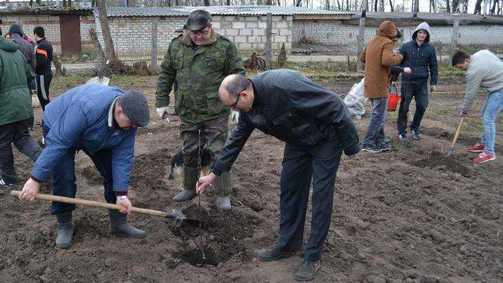 В Брянской области к 9 Мая расцветут «Сады Победы»