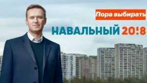 Защитница «брянского пленника» призвала ЦИК разобраться с «аферистом Навальным»