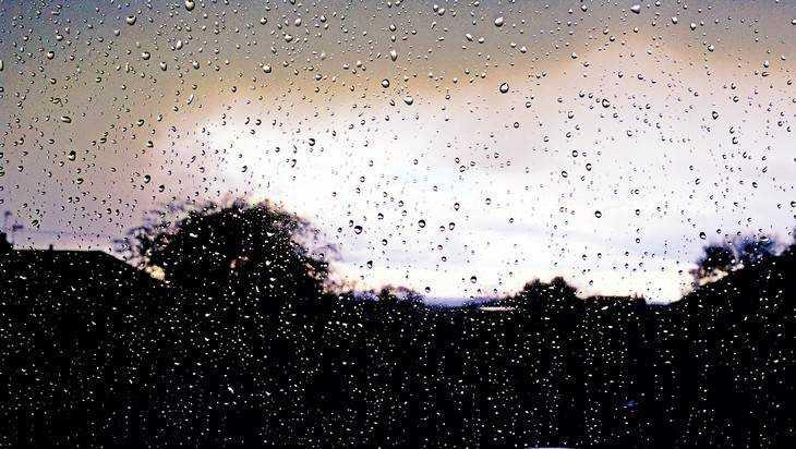 Сегодня в Брянске будет пасмурно и дождливо