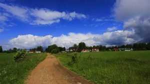 Для брянских многодетных семей подготовили 225 земельных участков